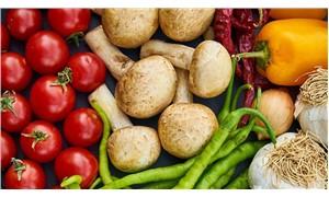 Hileli ürünler organik tarıma leke sürmesin