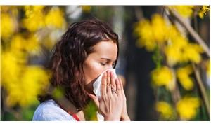 Bahar alerjisi yaşam kalitenizi düşürmesin!