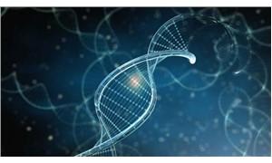 Çinli bilim insanları cüzzama yol açan iki yeni gen değişikliği tespit etti