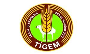 Büyükbaş ve küçükbaş hayvan ihalesi TİGEM tarafından iptal edildi
