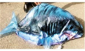 Ermenistan, Türkiye sınırında kameralı köpekbalığı balonu buldu
