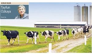 Tarımda geldiğimiz nokta ve çıkış nerede? -1: Tarım üreticileri, çifte kıskaç altında eziliyor