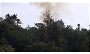 Yıldırım düşen ormanda yangın