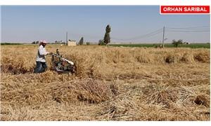 AKP iktidarı çiftçi haklarını gasp etti