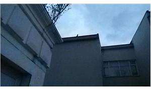 Dal kesildi çatıda kaldılar