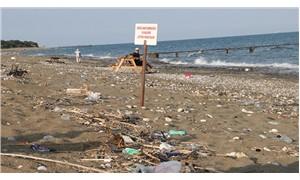 Sahile bırakılan çöpler caretta carettaları olumsuz etkiliyor