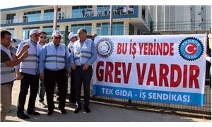 Barilla işçileri greve çıktı
