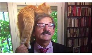 Tarihçinin canlı yayın röportajına, kedisi de dahil oldu