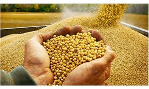 İhtiyacımız olan gıda devrimi