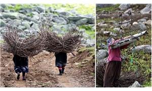 Köylüler, doğanın bozulmaması için yaylaya yol yapılmasına izin vermedi