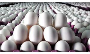 Temmuz ayında yumurtaya yüzde 26.67 zam geldi