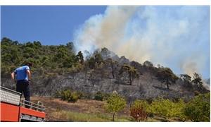 İznik'te makilik alanda yangın: 50 dönümlük arazi zarar gördü