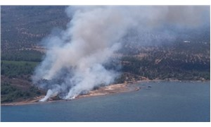 Balıkesir Cunda Adası'nda orman yangını
