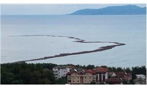 Ordu'daki selde 809 ton fındığın zarar gördüğü belirlendi