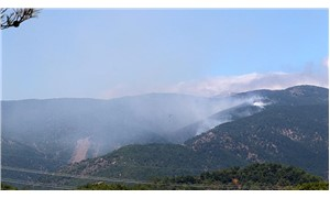 Hatay'ın Antakya ilçesindeki orman yangını kontrol altına alındı