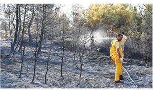 'Faili meçhul' yangınlar 20 hektar alanı kül etti