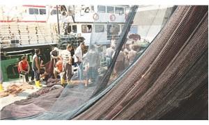 Balıkçının umut sezonu