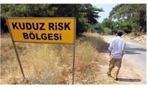 Antalya'nın 7 mahallesinde 'kuduz' karantinası