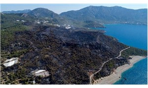 Kumluca'daki yangının bilançosu ağır