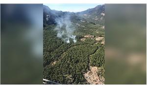 Antalya'da orman yangını
