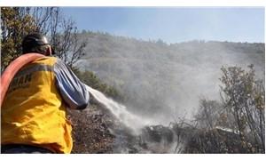 Gazipaşa'da orman yangını