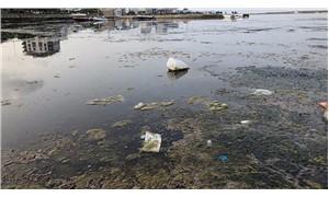 Samsun Çevre Platformu'ndan yat limanı tepkisi
