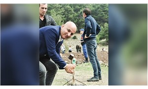 CHP'li Polat: Doğasına sahip çıkanları 28 Ekim'de Alaniçi'ne bekliyoruz