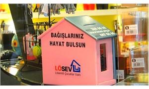 Bursa'da LÖSEV'in bağış kumbaralarını çaldılar