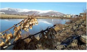 Ardahan'daki Kura Nehri buz tuttu