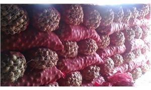 45 soğan deposuna baskın yapıldı