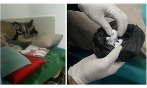 Bodrum'da perdeciye uyuşturucu operasyonu