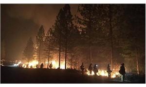 Kaliforniya'daki yangınlarda ölenlerin sayısı 81'e yükseldi