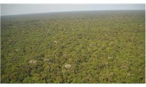Amazon Ormanları'nda son 10 yılın en büyük kaybı