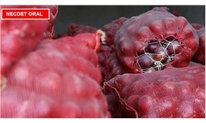 Kuru soğan plansız üretim kurbanı