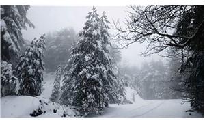 Kazdağlarında kar manzarası
