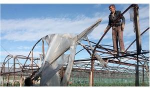 Kaş'ta yağmur ve hortum tarım alanlarına zarar verdi