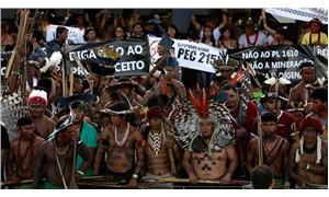 Amazon ormanı hırsı sürüyor