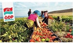 ÖDP'den 'Tarım ve Gıda Egemenliği Sempozyumu'