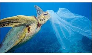 Tek kullanımlık plastikler yasaklanıyor