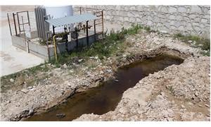 Depremden sonra oluşan yarıktan zehirli su akıyor
