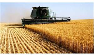 İklim değişikliği tarımsal üretimi de etkileyecek