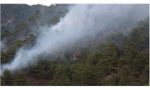 Tokat'ta orman yangınında 30 dekarlık alan zarar gördü