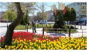 Sincan Belediyesi'nden laleye 3 milyon TL: AKP'li belediyenin 'lale devri'