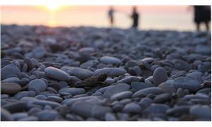 Bebek caretta carettalar denizle buluştu