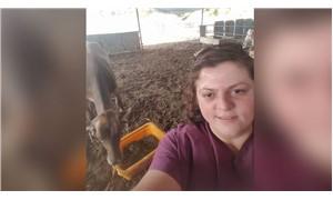 Muğla'da elektrik akımına kapılan veteriner hayatını kaybetti