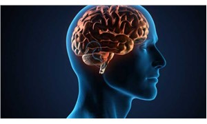 Beyin ve mühendislik