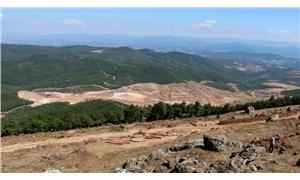 TRT Çocuk, 'Kaz Dağları'na zarar veriliyor' diyen çocuğu yayından aldı