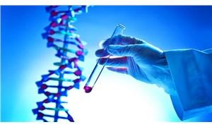 Yeni moda: gen biçimlendirmesi