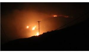 Marmara Adası'ndaki yangında 80 hektar küle döndü