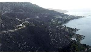 Marmara Adası'ndaki yangınla ilgili 2 kişi gözaltına alındı